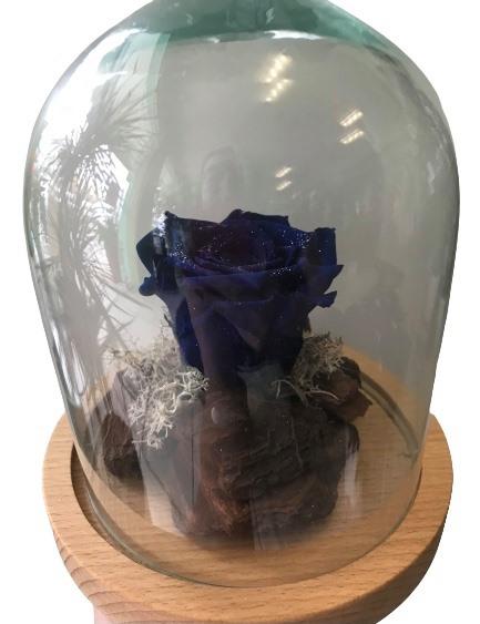 forever rose blue