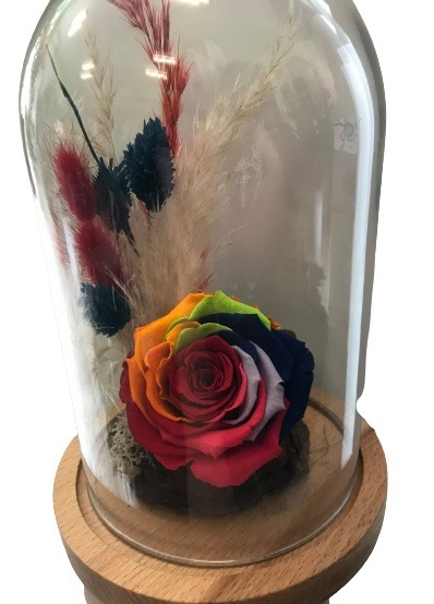 forever rose multi pampas grass dyed flowers
